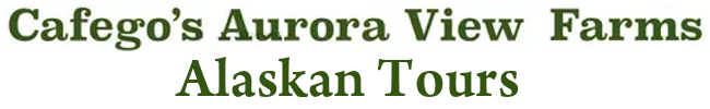 logo_new222